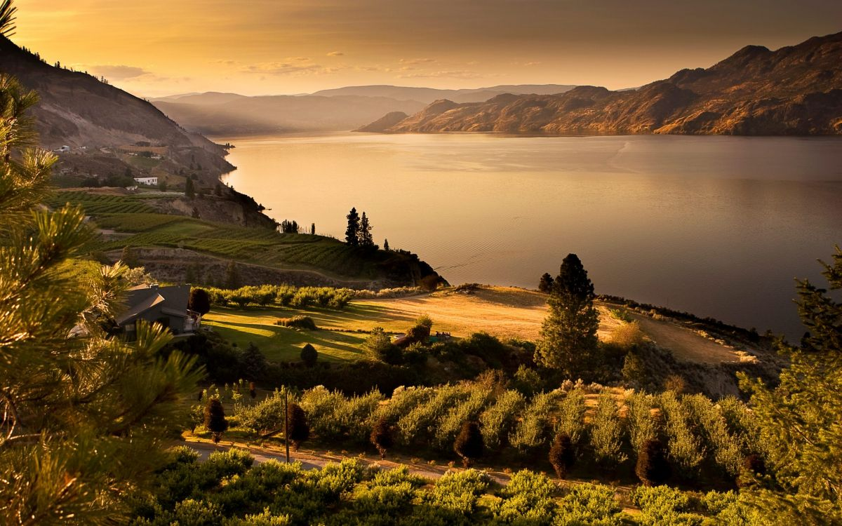 Summerland Vineyards and Orchards